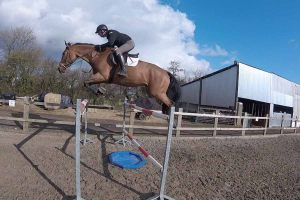 jb-showjumping-out-about-4
