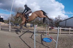 jb-showjumping-out-about-5