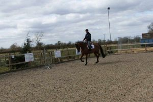 jb-showjumping-training-1