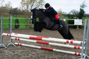 jb-showjumping-training-4