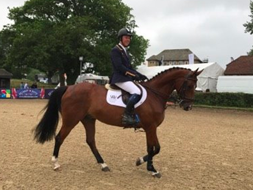 Enamorado Seventh in Main Arena, Hickstead