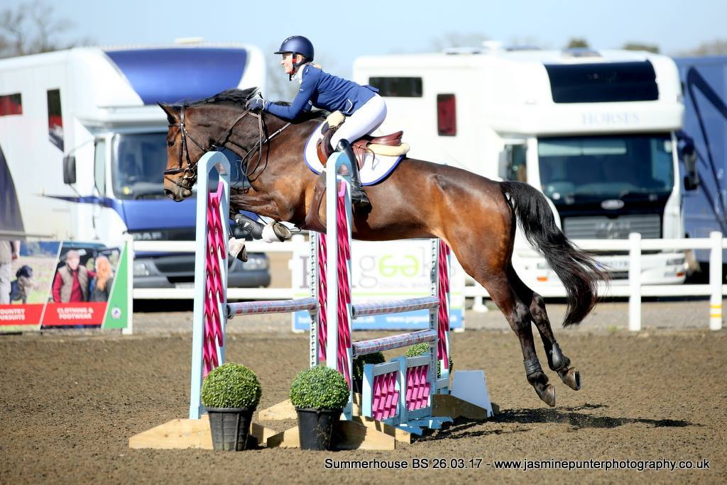 Diva Enjoying Showjumping with Tor Blizzard